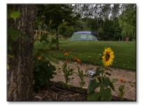 hill-farm-caravan-park (2)